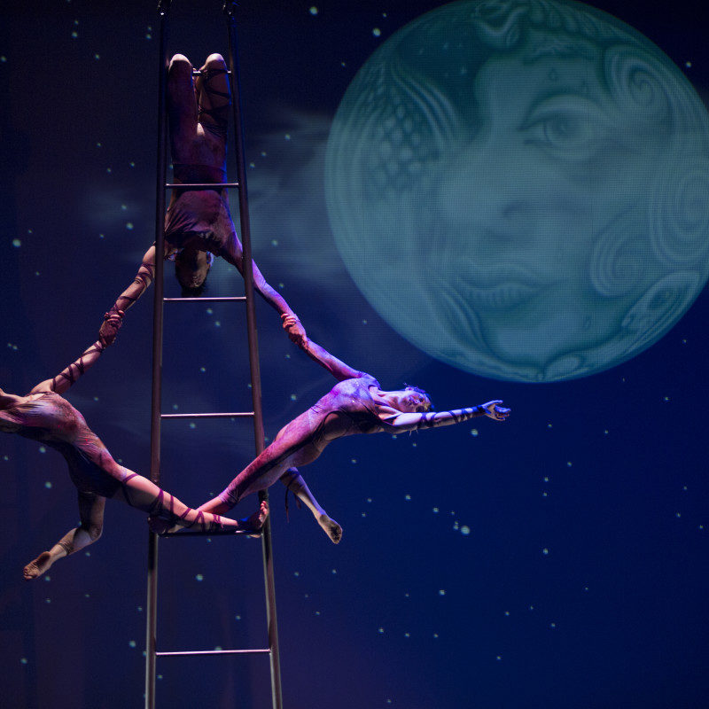 Performers on ladder in Circus Luminous.